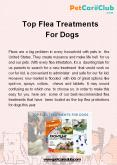 Top Flea Treatments For Dogs PowerPoint PPT Presentation