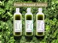 Fresh Pressed Juicery PowerPoint PPT Presentation