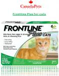 Frontline Plus For Cats - CanadaPetsSupplies - PDF PowerPoint PPT Presentation