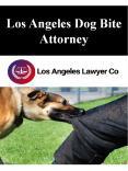 Los Angeles Dog Bite Attorney PowerPoint PPT Presentation