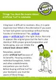 Things You Must Be Aware About Artificial Turf in Adelaide PowerPoint PPT Presentation