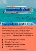Tips For A Beach Dolphin Cruise PowerPoint PPT Presentation