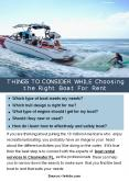 Things To Consider While Choosing the Right Boat For Rent PowerPoint PPT Presentation