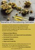 Benefits of Microdosing Cannabis PowerPoint PPT Presentation