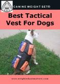 Best Tactical Vest For Dogs PowerPoint PPT Presentation