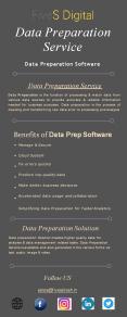Data Preparation Service - FiveSdigital PowerPoint PPT Presentation