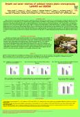 Growth and water relations of salinised tomato plants overexpressing LeNHX2 and SlSOS2  Jurado-Lavado O.1, Huertas, R.2., Ol PowerPoint PPT Presentation
