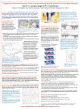 Triggering of the Positive Indian Ocean Dipole Events by Severe Cyclones over the Bay of Bengal PowerPoint PPT Presentation