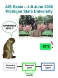 AIS Basic 49 June 2006 Michigan State University PowerPoint PPT Presentation