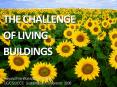 THE CHALLENGE PowerPoint PPT Presentation