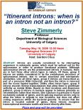 Itinerant introns: when is an intron not an intron PowerPoint PPT Presentation