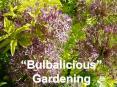 Bulbalicious Gardening PowerPoint PPT Presentation