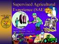 Supervised Agricultural Experience SAE PowerPoint PPT Presentation