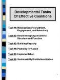 Developmental Tasks Of Effective Coalitions PowerPoint PPT Presentation
