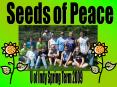 Seeds of Peace PowerPoint PPT Presentation