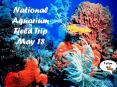 National Aquarium Field Trip PowerPoint PPT Presentation