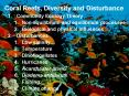 Coral Reefs, Diversity and Disturbance PowerPoint PPT Presentation