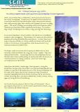 M6 Diving Cruise on sy GAEA PowerPoint PPT Presentation