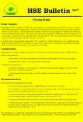 Wadi Crossing Safety Alert PowerPoint PPT Presentation