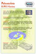 Paleontology IUPUI Geology PowerPoint PPT Presentation