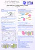 FLUORESCENT LIPOPOLYAMINES: PowerPoint PPT Presentation