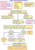 Major Haemorrhage Management PowerPoint PPT Presentation