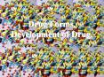 Drug Forms' Development of Drug' PowerPoint PPT Presentation