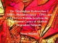 The Tryptophan Hydroxylase 2 (TPH2), Phosphorylated  PowerPoint PPT Presentation