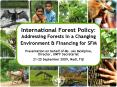 International Forest Policy: Addressing Forests in a Changing Environment PowerPoint PPT Presentation