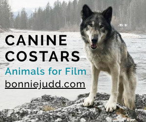 Canine Costars of Canada animal wrangler wrangling dogs canines British Columbia Bonnie Judd