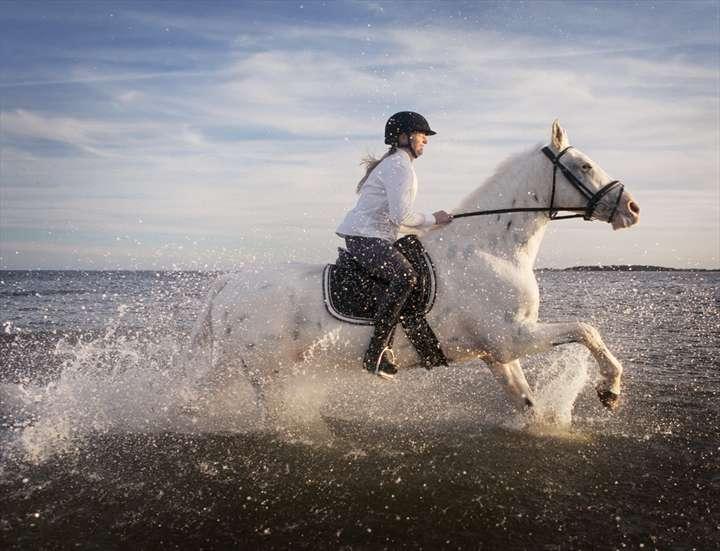 Hattrick (2013) photographer William Huber
