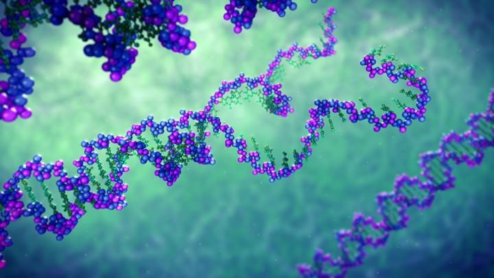 Unwinding DNA