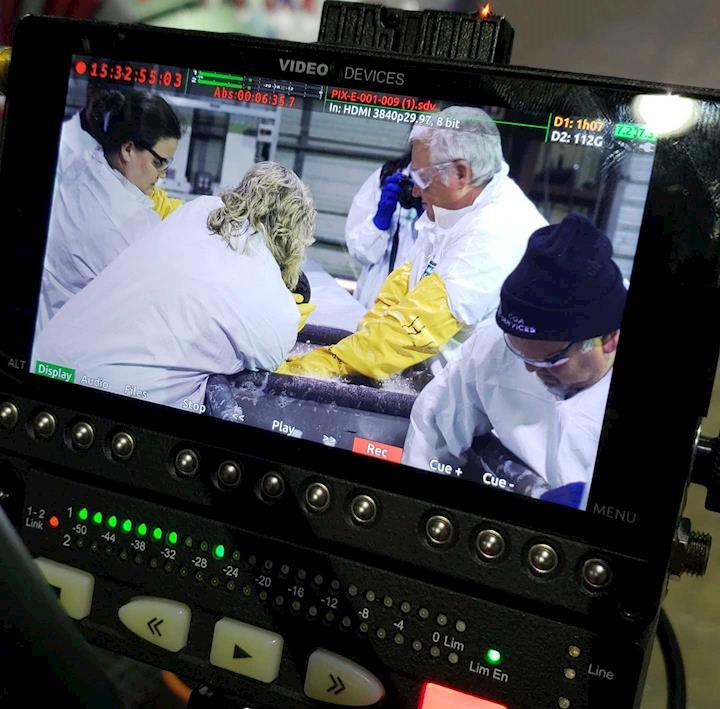 Filming a Wildlife Rehabilitation Story Oil Spill Response