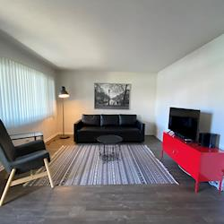 Furnished One-Bedroom Apartment