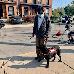 Friday the Black Lab on set playing the role of a service dog