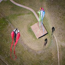 Flying Kites at White Rock Lake, Dallas