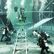 James Blackman; Marine Coordinator, Technical Diver Instructor