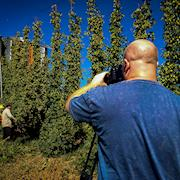 Filming the annual Hops harvest for Sam Adams in Yakima, WA