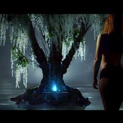 Luma Commercial Screenshot Tree of Life