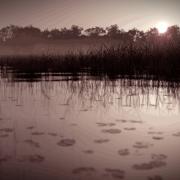 Blender Render | Lake