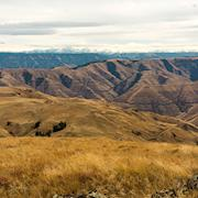 Hells Canyon from Harsin Butte