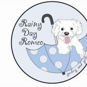Rainy Day Romeo- Logo