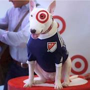 Target Dog - Behind The Scenes
