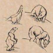 polar bear - life drawing (Pen & Ink)