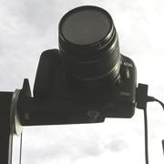 FotoCranes