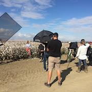 Land's End - Fashion Shoot - Cotton Fields Location