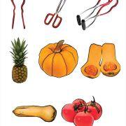 illustrations for cookbook (Pencil, Adobe Photoshop)