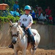 Cloud – small horse/big pony, Arabian, Mare