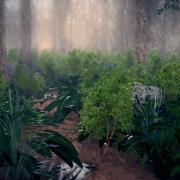 Blender Render | Forest