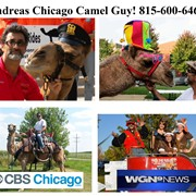 Andreas Chicago Animal Guy / 815-600-6464